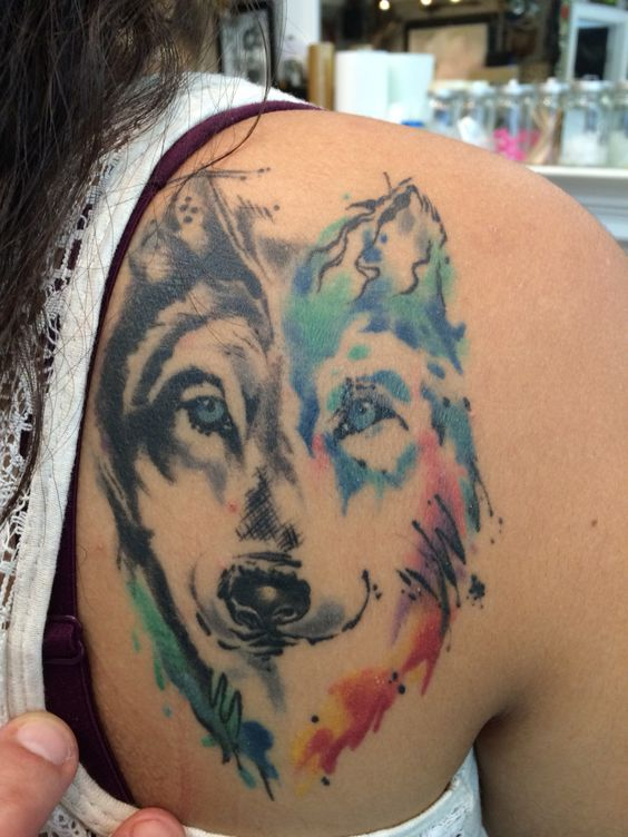water color husky pup by mike jupp color tattoo 39 s pinterest peacocks colors and mike d. Black Bedroom Furniture Sets. Home Design Ideas
