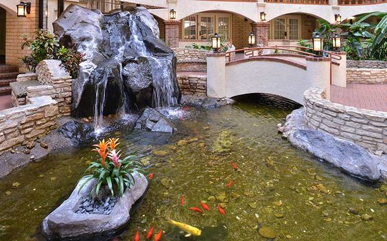 Hotels In Austin Embassy Suites By Hilton Austin Central Photo Gallery Austin Hotels Hotels In Austin Tx Embassy Suites