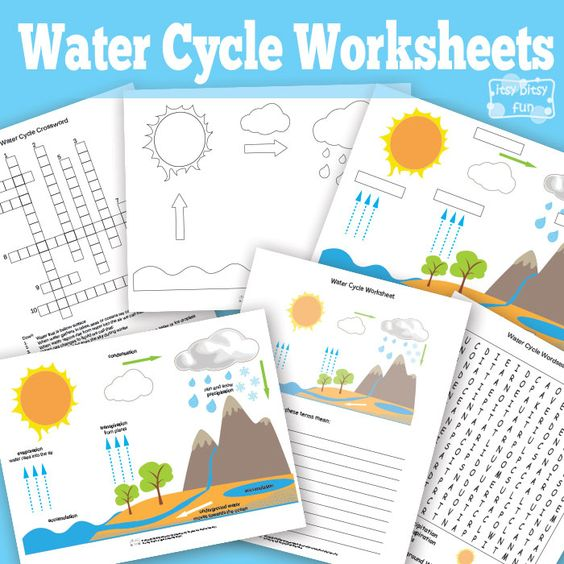 Water Cycle Worksheets And Water On Pinterest