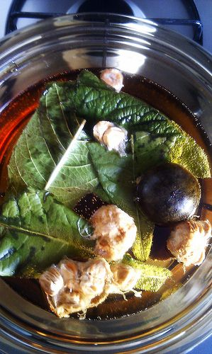 Chinese Buddha's fruit, loquat leaf tea