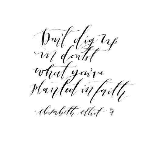 Inspiring quote. Don't dig up in doubt what you've planted in faith. Elizabeth Elliot. #inspirational #quote #faith #christianity
