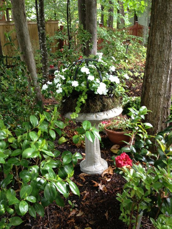 Impatiens, Creeping Jenny, and English Ivy in an old birdbath.