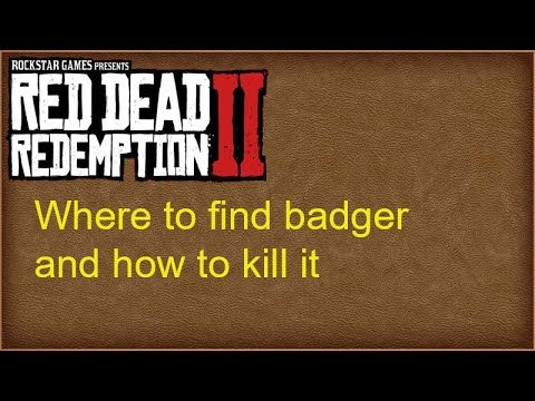 304fd05af1325d8f37b36c3bc7b96cdd - How To Get Perfect Skins In Red Dead Redemption