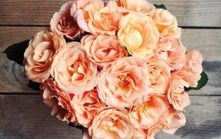 Flores Online | Compre Arranjos de Flores e Presentes Online
