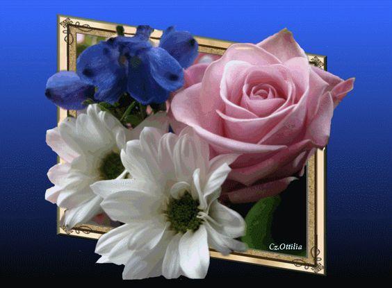 virágok.gif: