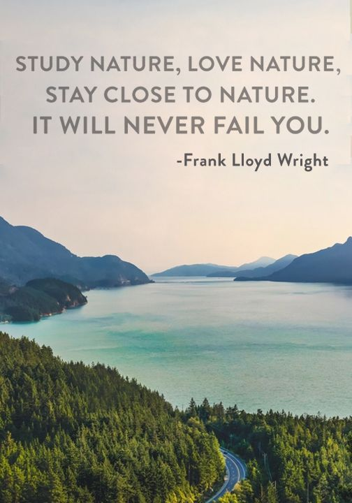 """Study nature, love nature, stay close to nature. It will never fail you."" — Frank Lloyd Wright"