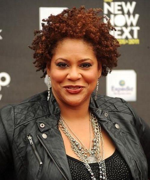 Amazing Natural African American Hairstyles For Women African American Short Hairstyles For Black Women Fulllsitofus