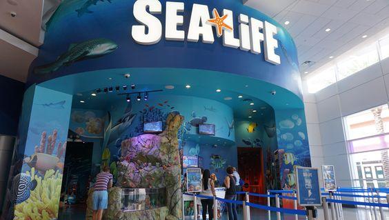 Uma roda gigante, um museu de cera e um aquário na cidade com os melhores parques do mundo. Será que a moda da Orlando Eye pega?: