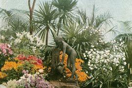Photo: Garden in Ghent