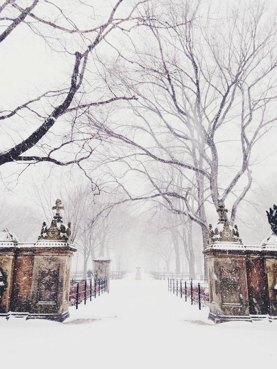 Lovely winter wonderland. (Source: thisisglamorous.com by Roséline)