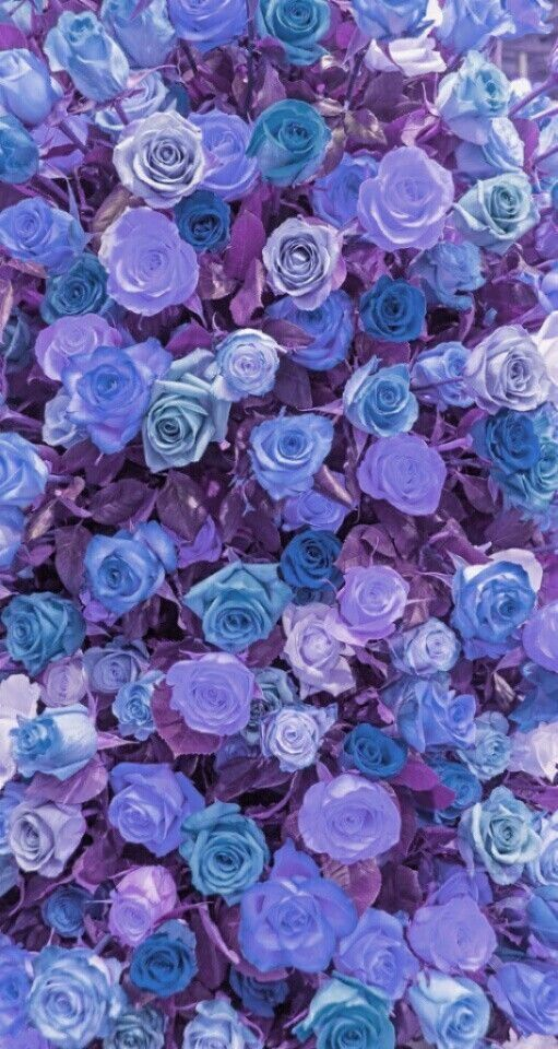Pin By Ette On À¸™à¸²à¸™à¸² À¸¡à¸²à¸¥ Flower Phone Wallpaper Purple Wallpaper Floral Wallpaper Goth aesthetic aesthetic colors aesthetic pastel violet aesthetic flower aesthetic pastel purple purple haze periwinkle flowers light purple. floral wallpaper