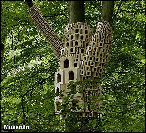 Oiseau En Decoration Dans Une Maison
