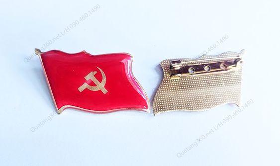 Huy hiệu đại hội đảng kt 4.6x2.7cm