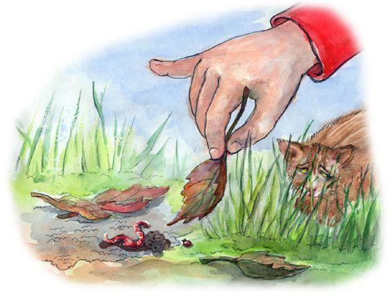 Kinderbuchillustration - Regenwurm im Garten von Agnes Zug