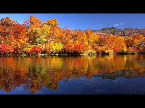 週四積極學習人生經驗 早安快樂 皆さん おはようございます 何時も ありがとうございます 10月29日(木曜日)は北日本の日本海側は冷たい雨や雪が降りやす...