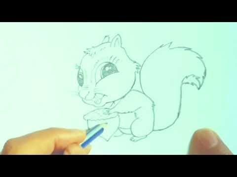 تعليم الرسم رسم سنجاب سهل بقلم الرصاص رسومات سهلة Art Female Sketch Female