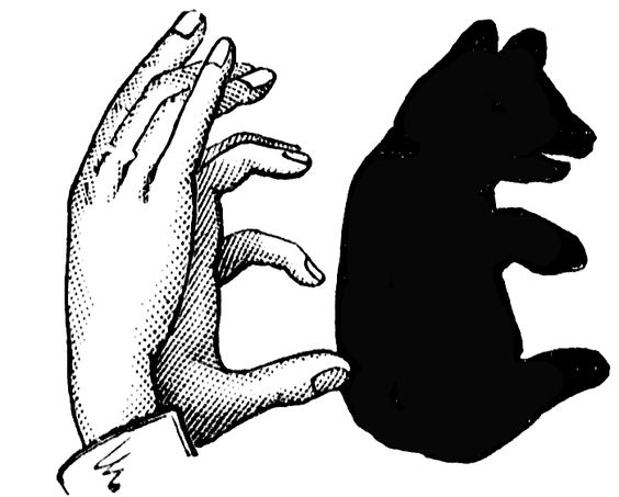 a shadow bear ! *starts laughing*