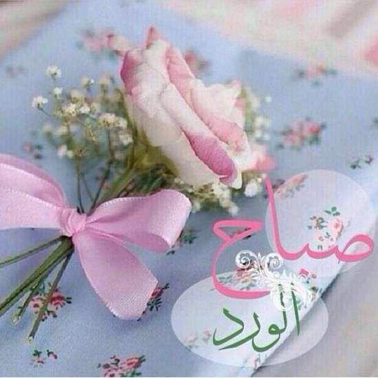 صور صباح الخير واجمل عبارات صباحية للأحبه والأصدقاء موقع مصري Good Morning Flowers Beautiful Morning Messages Good Morning Roses