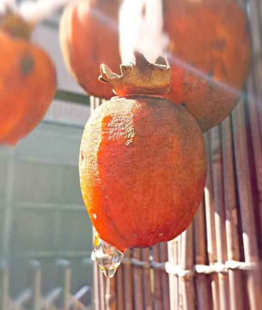 庭に干してあった干し柿☆甘い蜜が垂れてます(>∀<) - 9件のもぐもぐ - 我が家の干し柿☆ by mocosanvivi51