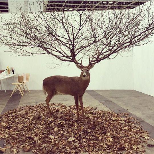 """ART BASEL,Reindeer Antlers """"The ultimate expression of seasonal joy"""", pinned by Ton van der Veer"""