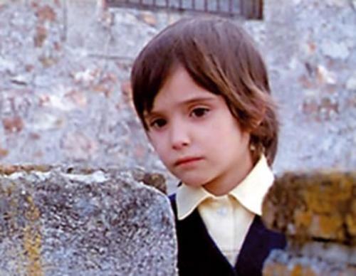 'el espíritu de la colmena', Víctor Erice.: