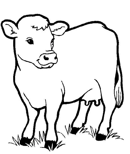 Free Coloring Pages Printable For Kids Animals Cow Animal Of