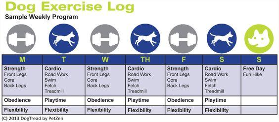 Dog Weekly Exercise Chart. http://www.petclubindia.com/