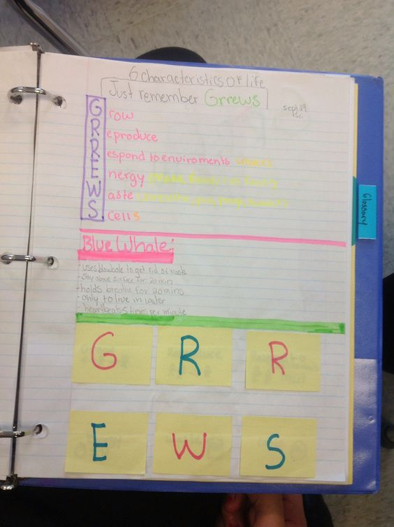 student generated notes on characteristics of life http://cldevin.blogspot.ca/