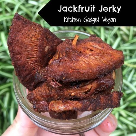 Jackfruit Jerky (and bonus recipes for other vegan jerky ideas).  Great for camping, hiking, snacking, or eating directly off the the baking sheet :)  These are vegan with gluten free and soy free variations.