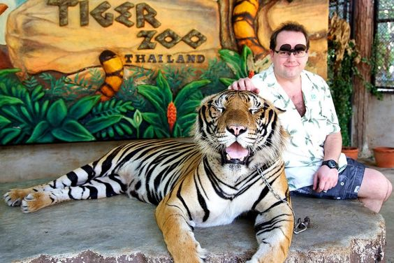 Explore Sriracha Tiger Zoo Pattaya — One of the best places to visit in Pattaya - Living + Nomads – Travel tips, Guides, News & Information!