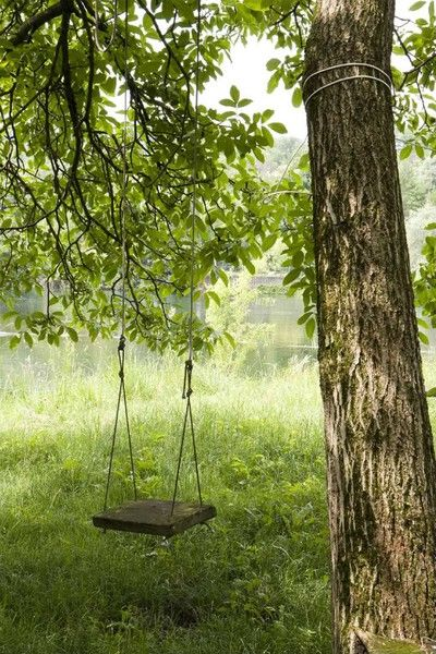 And there's a swing. But Ambrose is too old now to hang it from the maple tree whose roots plunge deep into the pond and whose branches form an umbrella over the water.