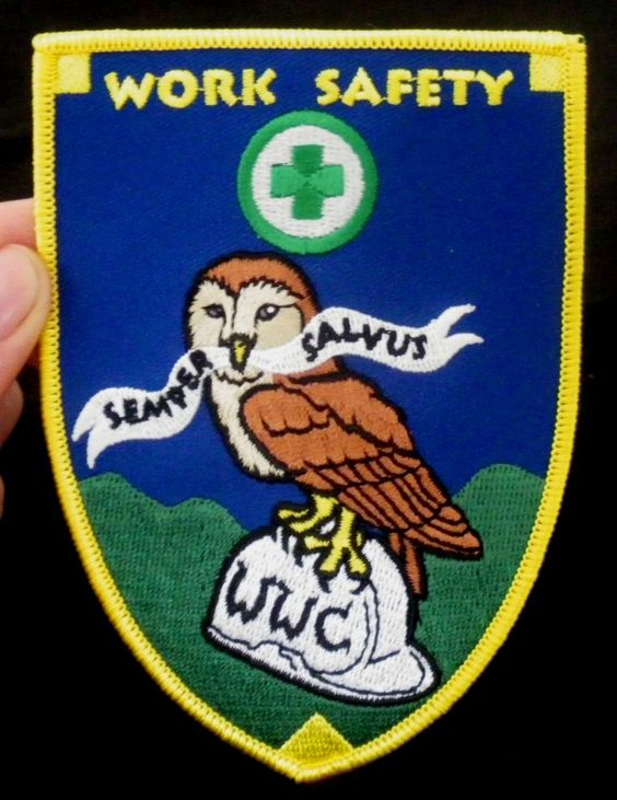 """A patch I designed for the OSHA Crew at Warren Wilson College. The owl is the school mascot and Semper Salvus is really bad Latin that might translate as """"Always Safe,"""" a pun on Semper Fi"""