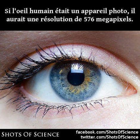 Pour en savoir plus (en anglais) : https://www.youtube.com/watch?v=4I5Q3UXkGd0 #oeil #résolution Si loeil humain était un appareil photo il aurait une résolution de 576 megapixels.