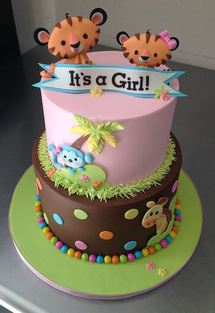 animal cakes baby animals animals pink dots the o jays babies a girl