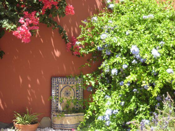 Peque o jard n en patio trasero andaluz jardin andalou for Jardin andaluz