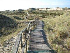 Insel, Amrum, Nordsee, Düne, Sand
