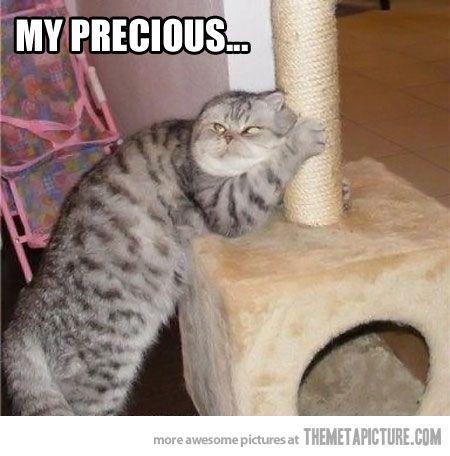 Hahaha. Cats are evil.