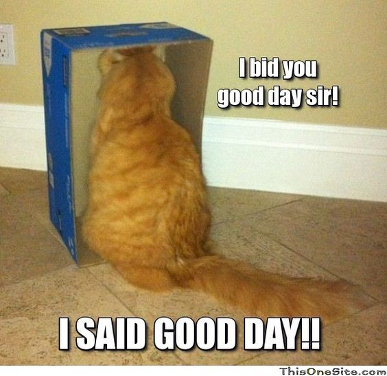 I bid you good day sir! I said good day!!