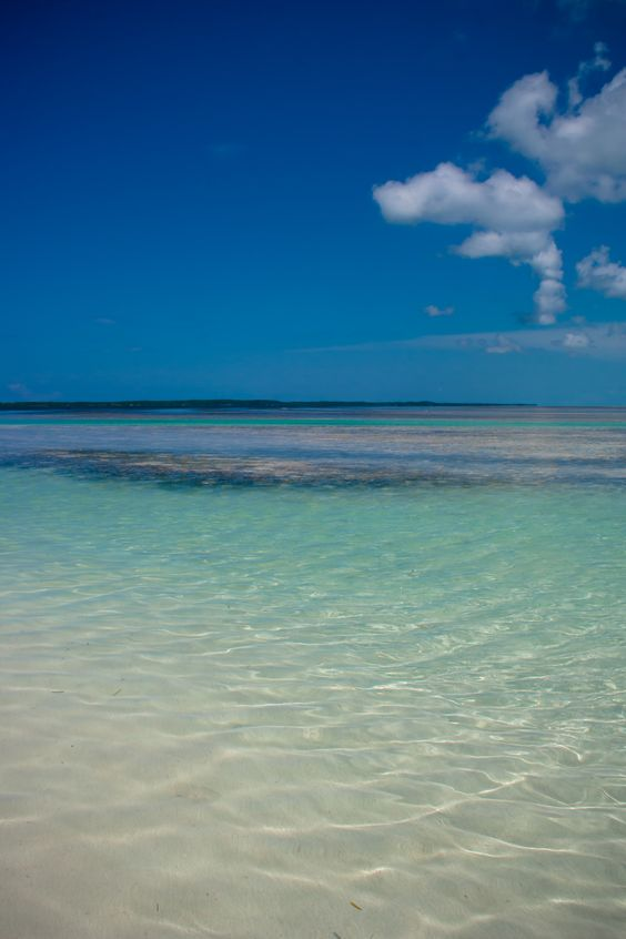 So excited for the Bahamas in April! Best Christmas ever!