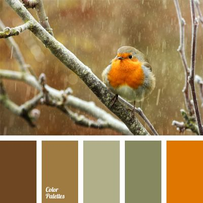 This is a great example of how cold marsh gray becomes warm when combined with warm shades of brown and bright orange..: