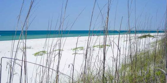 Sand dunes and sea oats at Fort Pickens Pensacola Beach