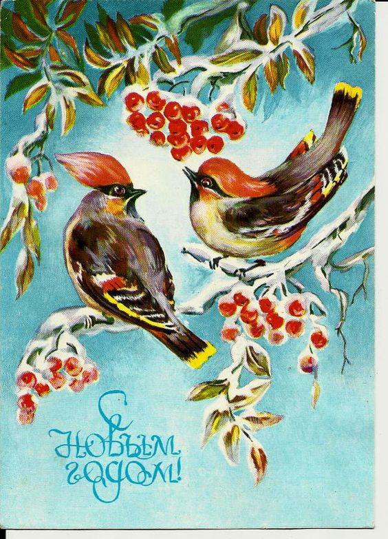 New Year Birds  Vintage  Russian Postcard by LucyMarket on Etsy, $3.50: