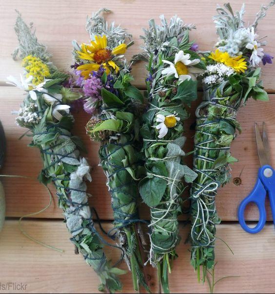 9 hierbas que puedes usar como incienso