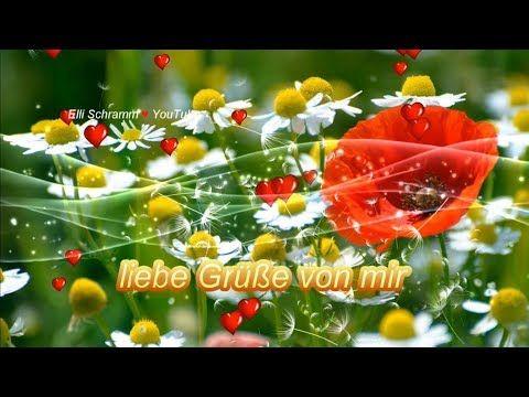 Guten Morgen Ich Wunsche Dir Einen Schonen Tag Mit Lieben Grussen Von Mir Yo Schonen Tag Spruche Guten Morgen Wunsche Alles Gute Zum Geburtstag Lieder