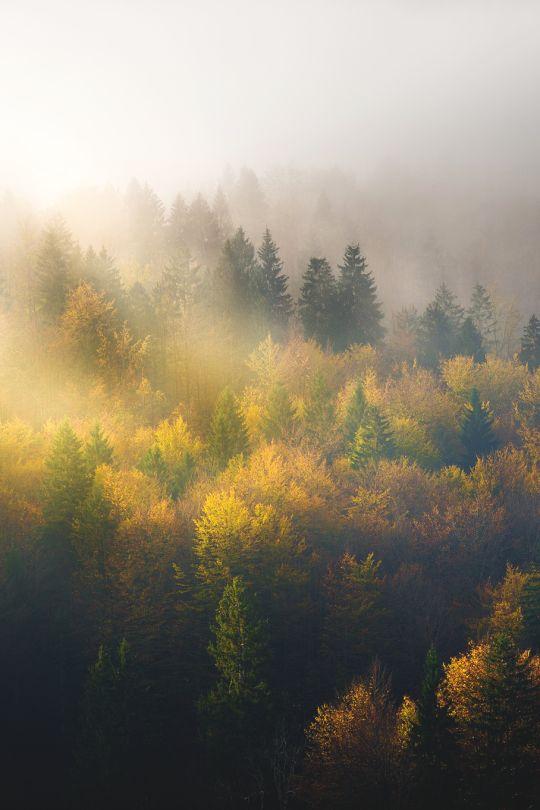 Slovenia | Khanh Nguyen