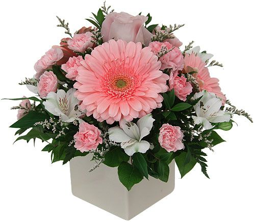 Give this pretty arrangement of soft pink and white flowers, expertly created using Gerbera daisies, alstroemerias, mini carnations and a single, sweet rose.: