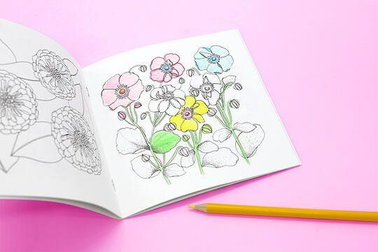 How To Make A Coloring Book To Sell In 2020 Coloring Books Toddler Coloring Book Coloring Book Pages