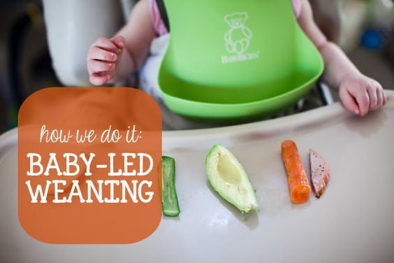 You Are My Licorice: How I Do It: Baby-Led Weaning  (testing badge)