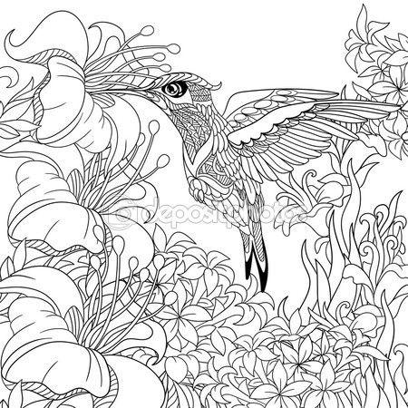 Zentangle estilizado colibrí — Vector de stock #101172928