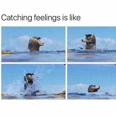 Yeah. This is how it feels to have a crush! #gerald #findingdory #geraldthesealion #findinggerald #geraldfindingdory